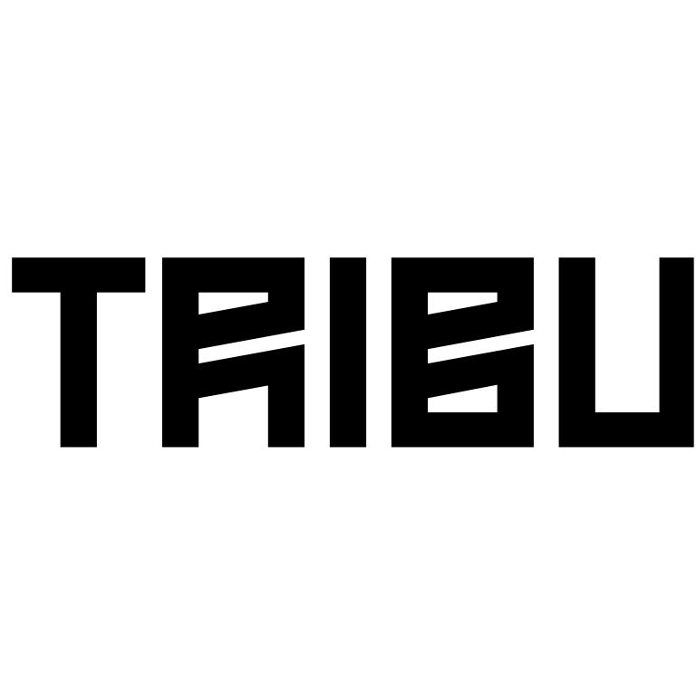 TRIBU architecture